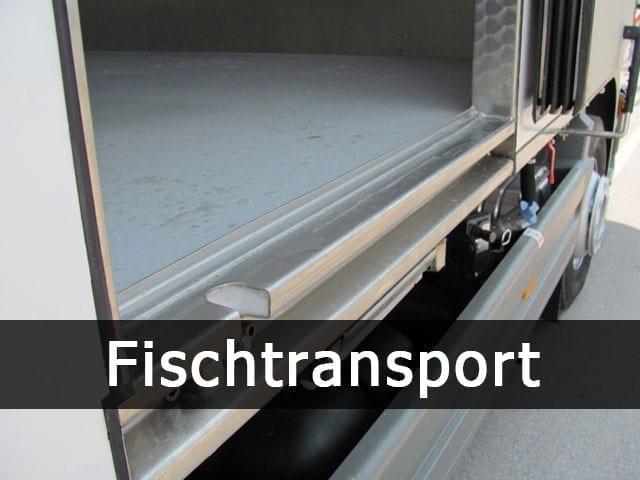stathis-eidikes-kataskeues-fischtransport